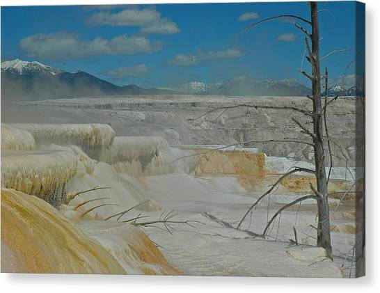 Mammoth Hot Springs Terrace In Yellowstone National Park Canvas Print