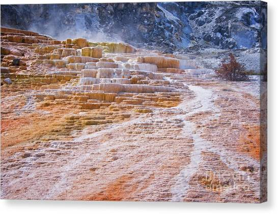 Yellowstone Canvas Print - Mammoth Terraces Of Yellowstone by Delphimages Photo Creations