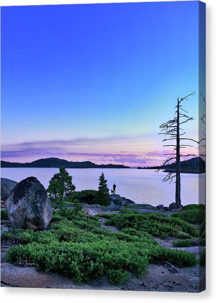Canvas Print featuring the photograph Man And Dog by Jim Thompson