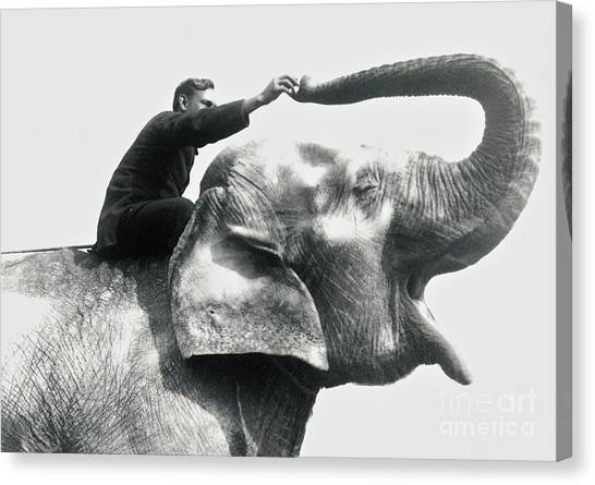 Keeper Canvas Print - Man Riding An Elephant  by Frederick William Bond