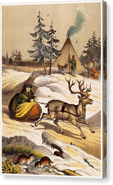 Vintage Canvas Print - Man Riding Reindeer-drawn Sleigh by Wellcome Images