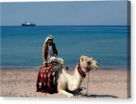 Man With Camel At Red Sea Canvas Print by Carl Purcell