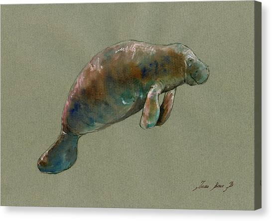 Manatee Canvas Print   Manatee Watercolor Art By Juan Bosco