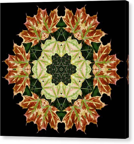 Mandala Autumn Star Canvas Print