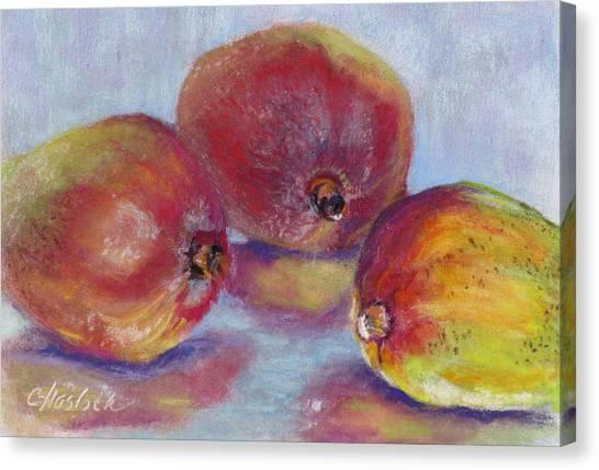 Mangos Canvas Print by Carole Haslock