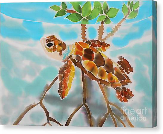 Mangrove Baby Turtle Canvas Print