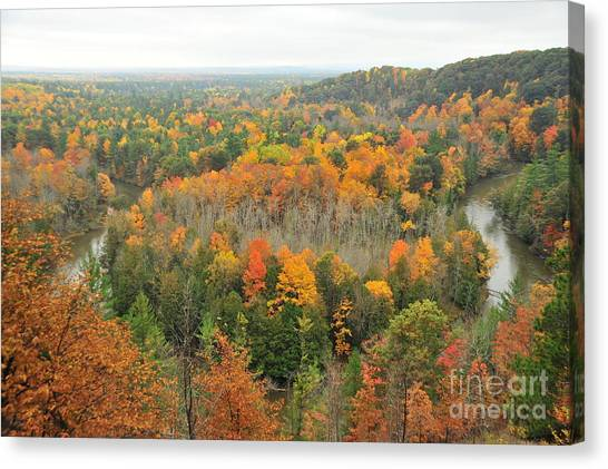 Landscapes Canvas Print - Manistee River Horseshoe Bend by Terri Gostola