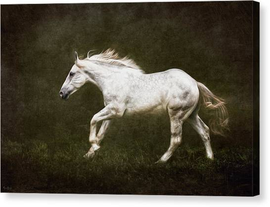 Marble Horse Canvas Print