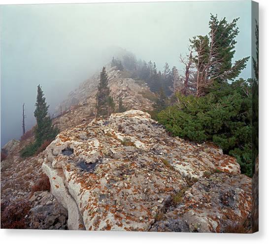 Marble View Fog Canvas Print