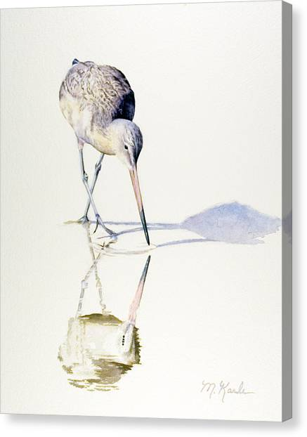 Marbled Godwit Times Three Canvas Print