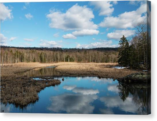 March Afternoon At Black Creek Canvas Print