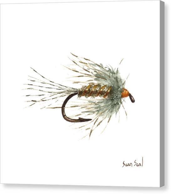 March Brown Spider Canvas Print