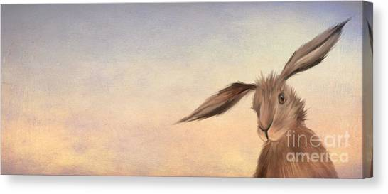 Rabbits Canvas Print - March Hare by John Edwards