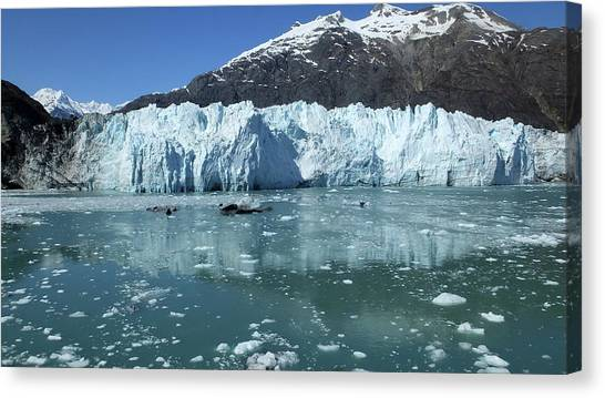 Margerie Glacier Canvas Print - Margerie Glacier 1 by Judy Wanamaker