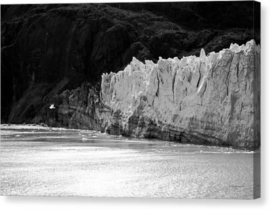 Margerie Glacier Canvas Print - Glacier Bay Seascapes. Margerie Glacier About To Calve Bw by Connie Fox