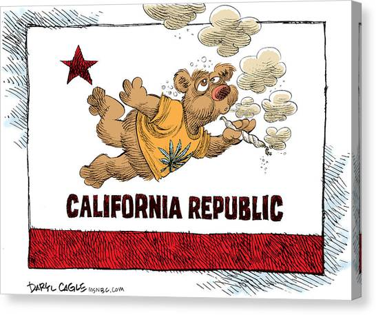 Canvas Print featuring the drawing Marijuana Referendum In California by Daryl Cagle