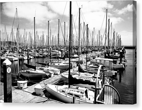 Marina In Black And White Canvas Print by Sean Gillespie