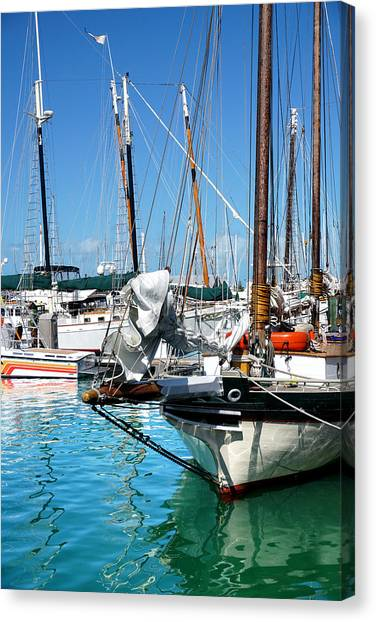 Marinas And Masts  Canvas Print