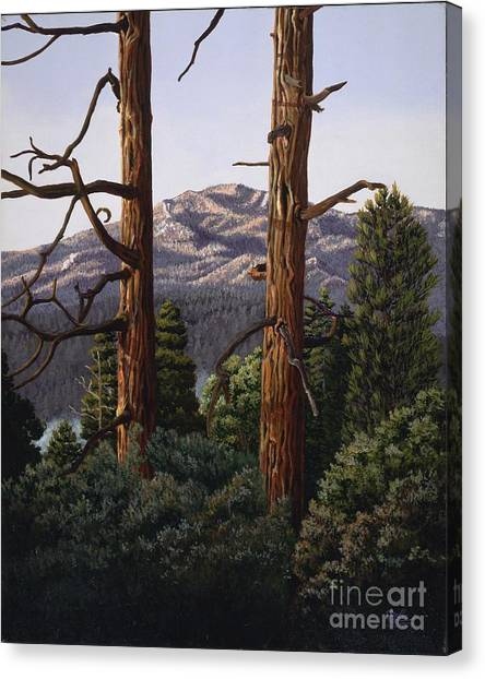 Marion Mountain At Sun Set Canvas Print