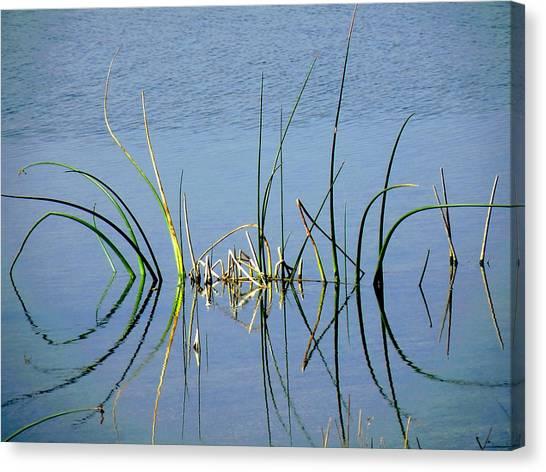 Marsh Design Canvas Print by Rosalie Scanlon