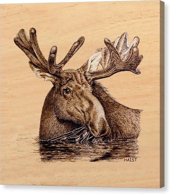 Marsh Moose Pillow/bag Canvas Print