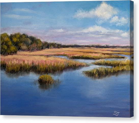 Marshland In Florida Canvas Print
