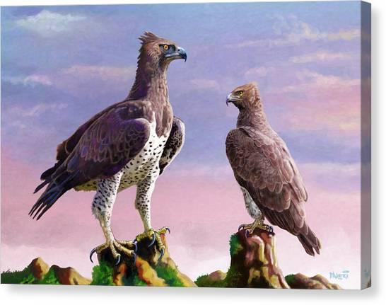 Martial Eagles Canvas Print