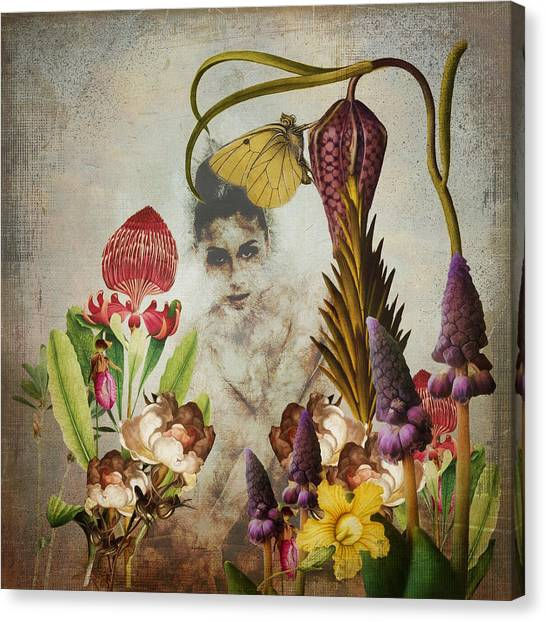 Mary Mary Quite Contrary Canvas Print