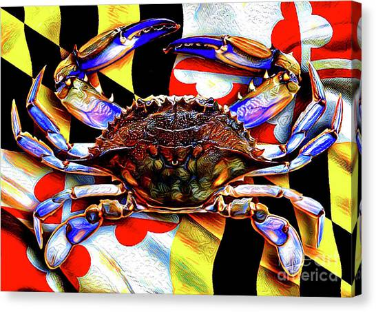 Maryland Blue Crab Canvas Print