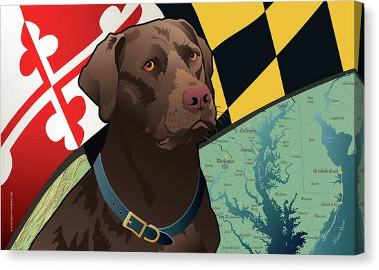 Maryland Chocolate Lab Canvas Print