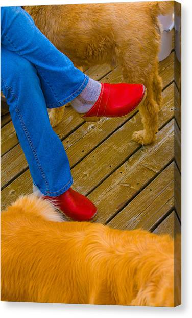 Marys Red Shoes Canvas Print by John Toxey