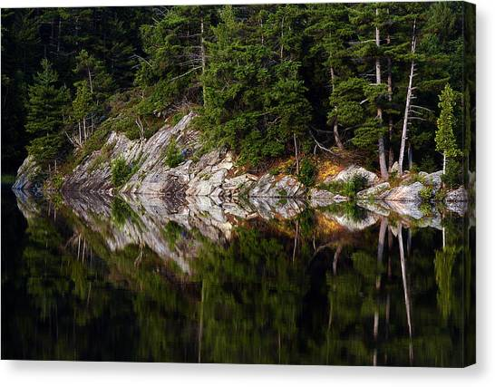 Massasauga Park Reflection Canvas Print