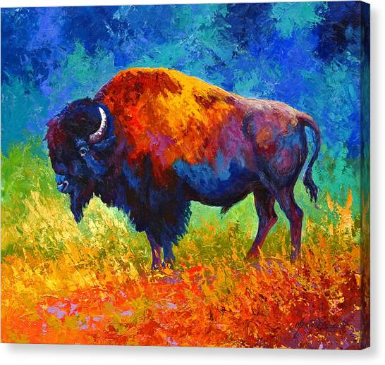 Bulls Canvas Print - Master Of His Herd by Marion Rose