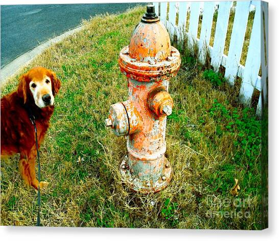 Matching Dog And Fire Hydrant Canvas Print by Chuck Taylor