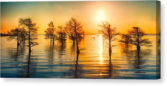 Mattamuskeet Sunrise 9103 Canvas Print