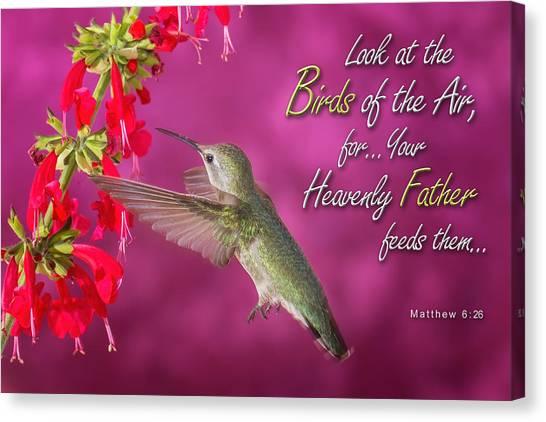 Matthew 6 26 Canvas Print