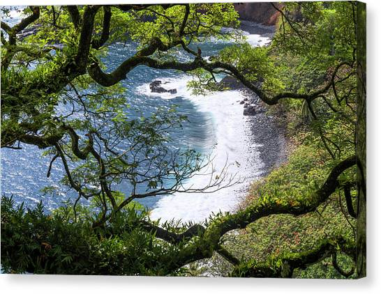 Beach Cliffs Canvas Print - Maui by Chad Dutson