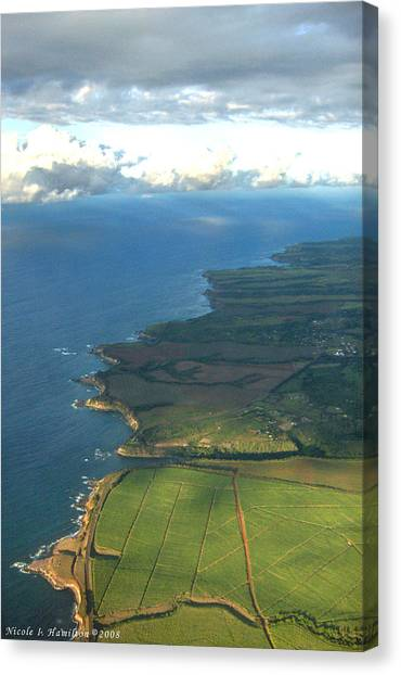Maui Coastline Canvas Print by Nicole I Hamilton