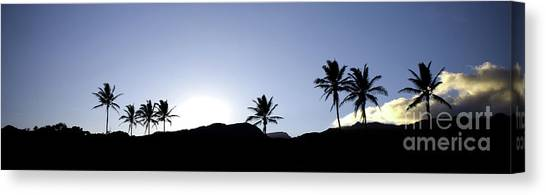 Maui Sunset Palm Tree Silhouettes Canvas Print by Denis Dore
