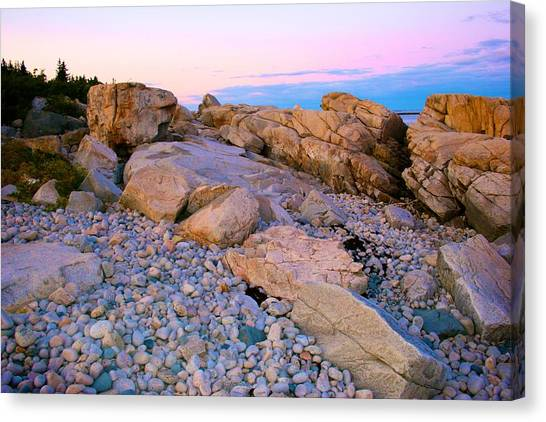 Mauve Light On Schoodic Penninsula Canvas Print