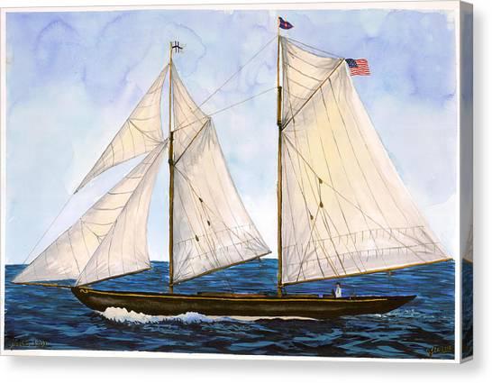 Mavis 1901 Canvas Print