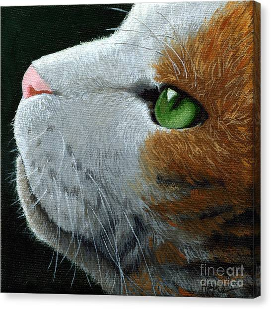 Max - Neighbor Cat Painting Canvas Print by Linda Apple