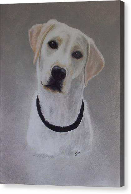 Maxie Canvas Print by Janice M Booth
