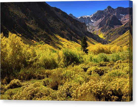 Mcgee Creek Alive With Color Canvas Print