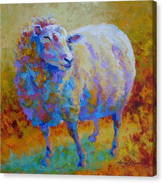 Llama Canvas Print - Me Me Me by Marion Rose