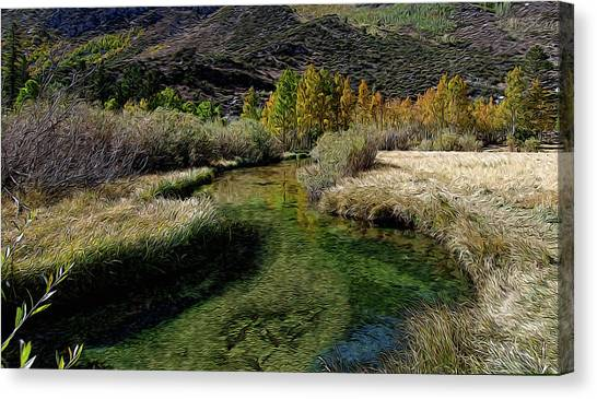 Meadow Creek Canvas Print