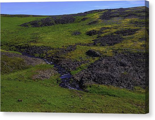 Table Mountain Canvas Print - Meadow Creek by Garry Gay