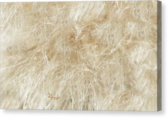 Meadow Fluff Canvas Print