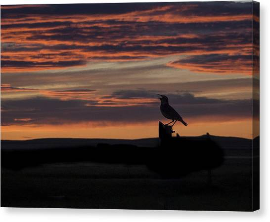 Meadow Lark's Salute To The Sunset Canvas Print