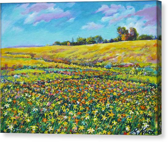 Meadow Of The Quilted Lilies Canvas Print by Richard Knox